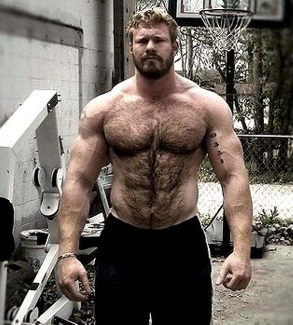 Big Muscle Hairy