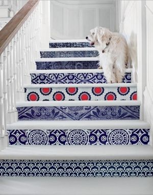 red white and blue... tiled stairs with dog...