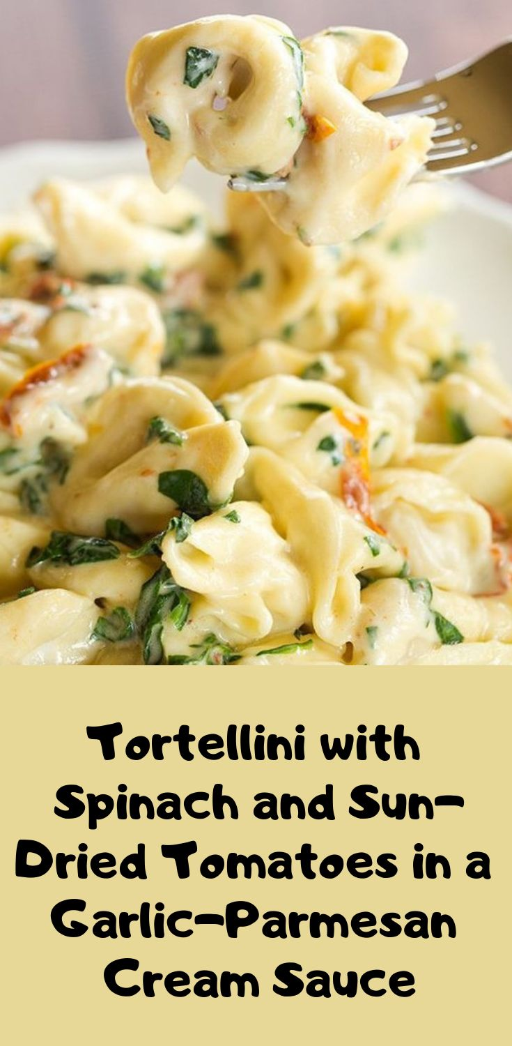 Tortellini with Spinach and Sun-Dried Tomatoes in a Garlic-Parmesan Cream Sauce | Food Dinner Recipe