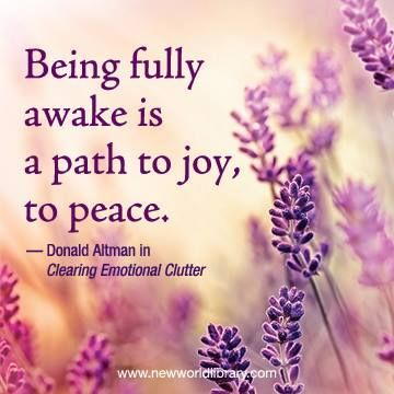 """Being fully awake is a path to joy, to peace."" ~ #DonaldAltman in CLEARING EMOTIONAL CLUTTER"