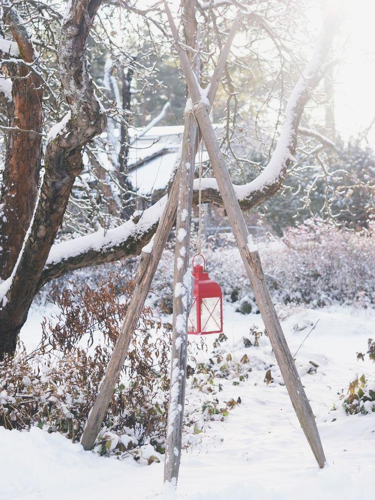 Winter in the garden. DIY garden ideas.