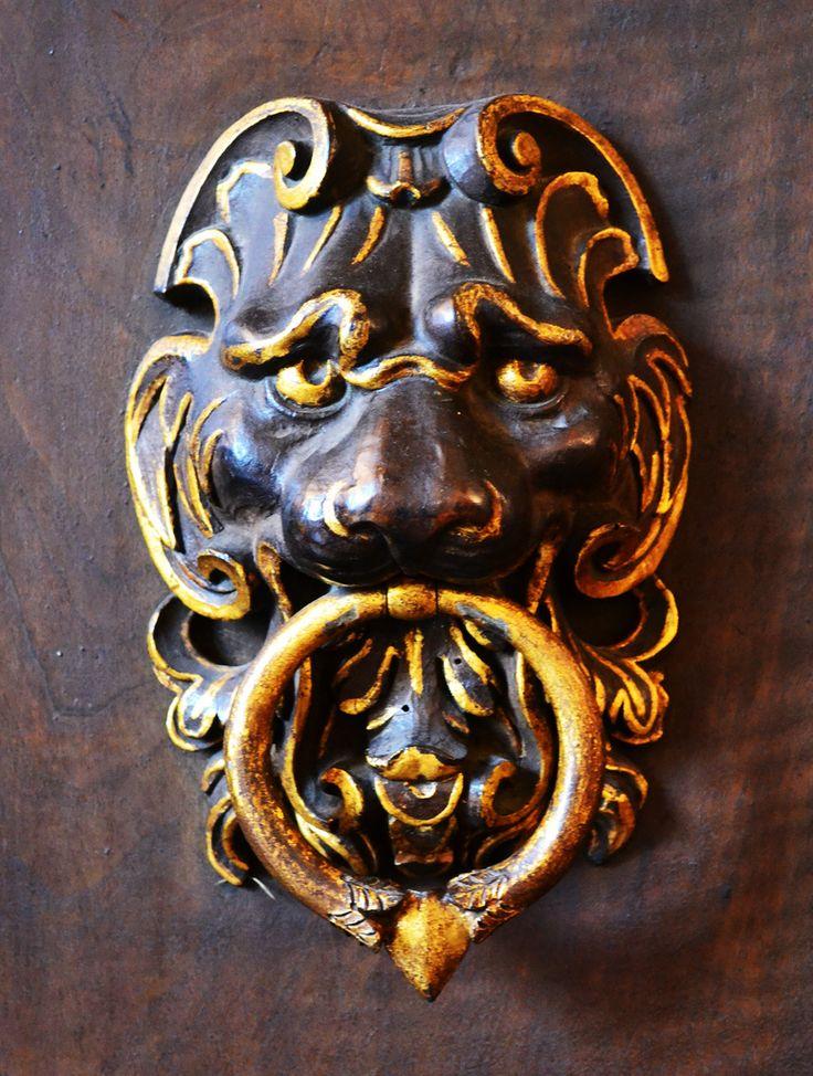 Lion door knocker by pjpink