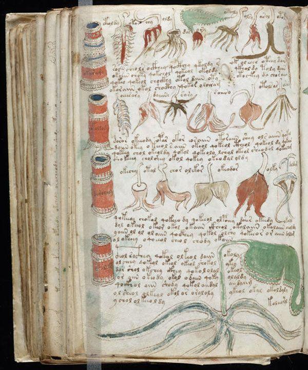 Beinecke MS 408 folio