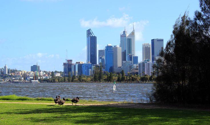 Mais que faire pendant une semaine à Perth, capitale du Western Australia ? Début de réponse dans le récit de nos premiers pas en Australie ...