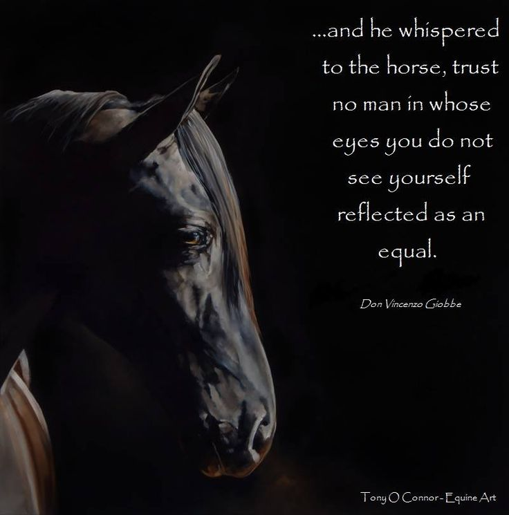 Why Not To Trust Men: And He Whispered To The Horse, Trust No Man In Whose Eyes