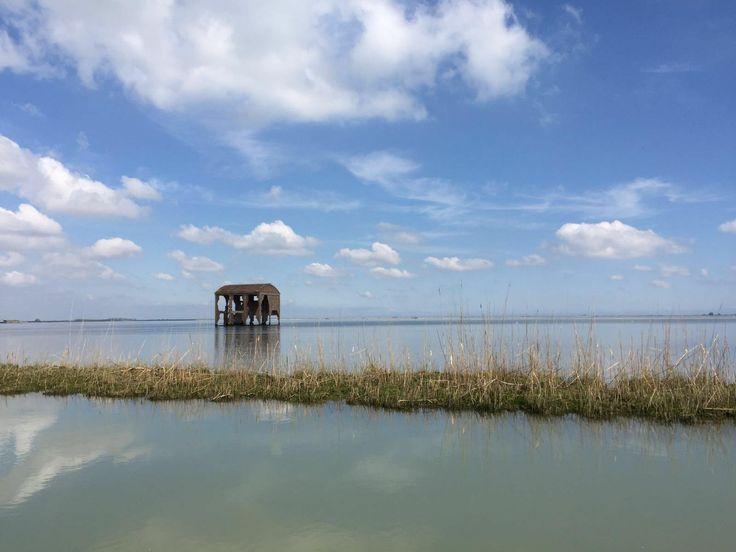 **Escursioni in Barca nel Delta del Po - Alberto Barini - Porto Tolle, Italy