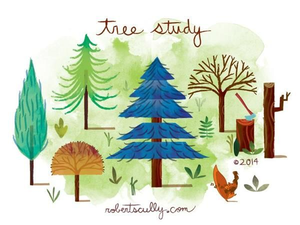 Tree Study by Robert Scully, via Behance