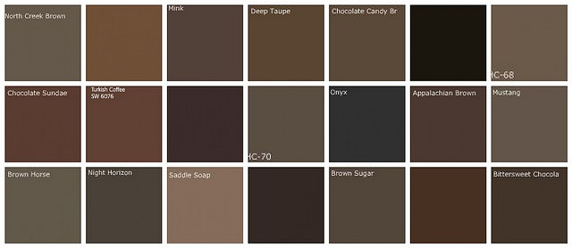 """Dark brown paint color swatches from Benjamin Moore.  We ended up painting our living room Sherwin Williams """"Sticks & Stones"""".  Love it!"""