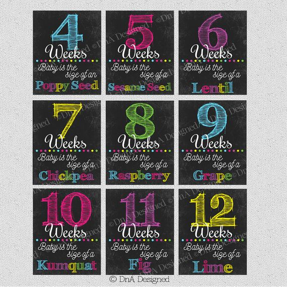 Weekly Pregnancy Chalkboard Weeks - Instant Download - Photo Prop - Announcement - DIY - {41PCS} by DnA Designed