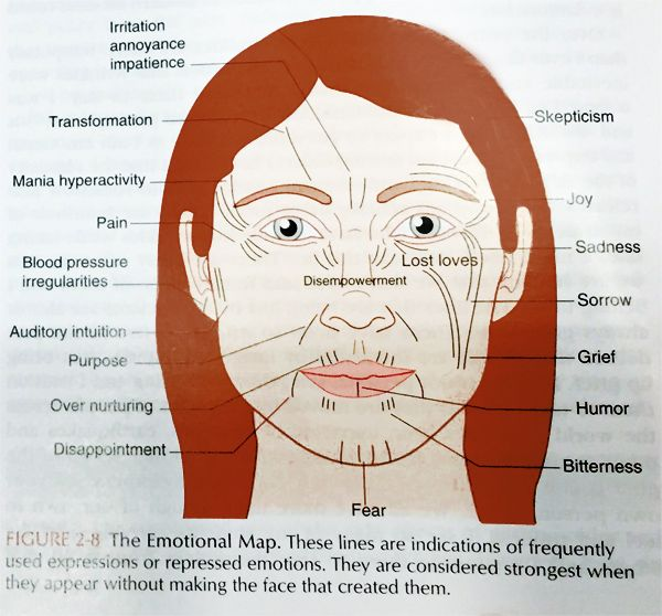 Image result for Face Reading in Chinese Medicine