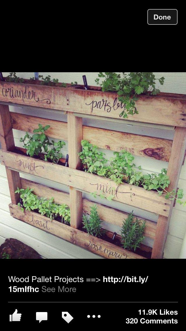Vertical wood pallet herb garden h o m e pinterest for Wood pallet herb garden