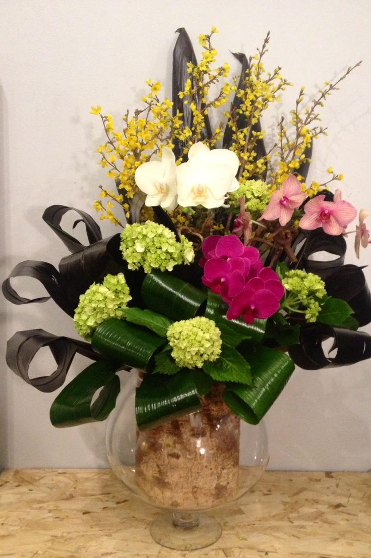 Images about orchids nyc on pinterest floral