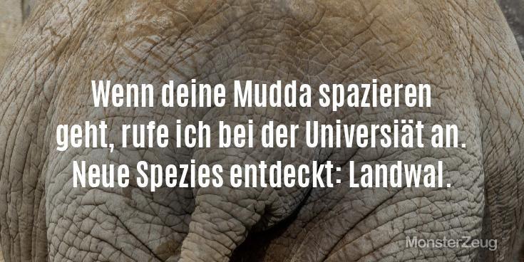 """Die besten Deine Mutter Witze: """"Wenn deine Mudda spazieren  geht, rufe ich bei der Universiät an.  Neue Spezies entdeckt: Landwal."""" Jetzt eigenen Witz erstellen und teilen. #Monsterzeug #Mutterwitze #Mutter #Mudda #Witze #Sprüche"""
