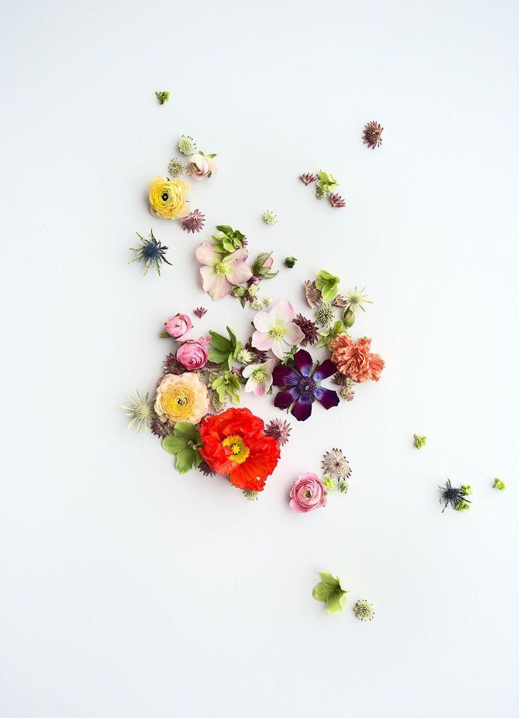 Spring Renewal / via decor8blog #shoecarnival