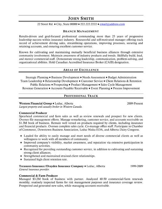 Insurance Executive Resume Example  Template