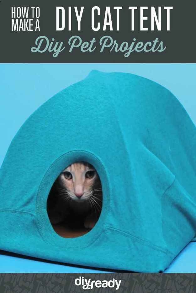 How to Make a DIY Cat Tent | Handmade Pet Projects by DIY Projects at https://diyprojects.com/how-to-make-a-diy-cat-tent/