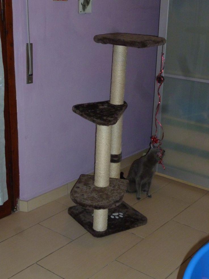 Garu's new toy
