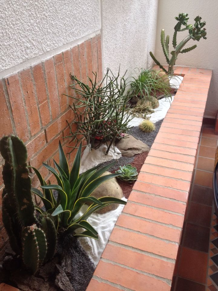 M s de 1000 ideas sobre jard n seco en pinterest jardiner a jard n de grava y xeriscaping - Recuperar jardin seco ...