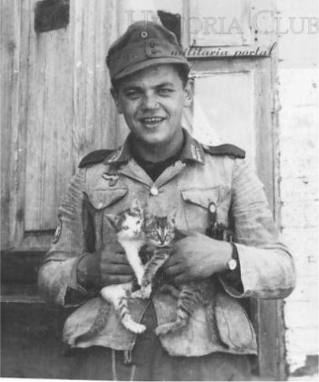 German soldier with two kittens.