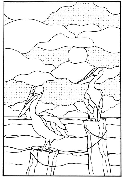 1086 Best Adult ColouringAnimalsZentangles Images On
