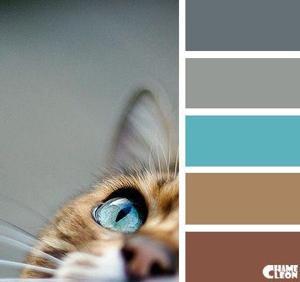 best 25 blue brown ideas on pinterest blue colour palette color balance and blue color schemes