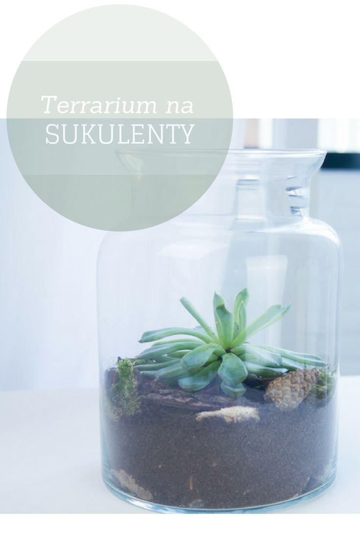 Proste DIY jak zrobić terrarium na sukulenty- kliknij w zdjęcie. Efektowna dekoracja do domu zrób to sam.