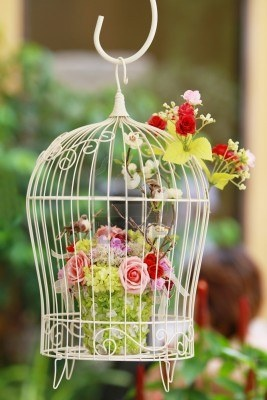 Jaula colgante con flores. Image 7520616.