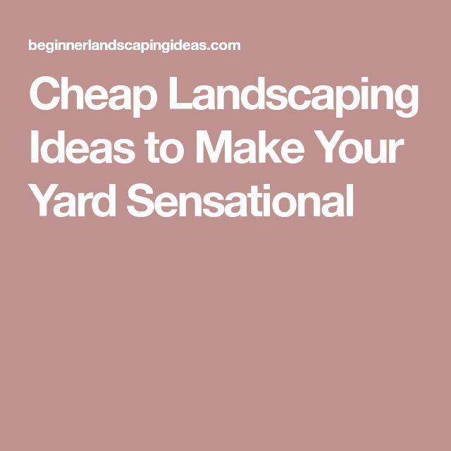 7 Affordable Landscaping Ideas For Under 1 000: Best 25+ Cheap Landscaping Ideas Ideas On Pinterest