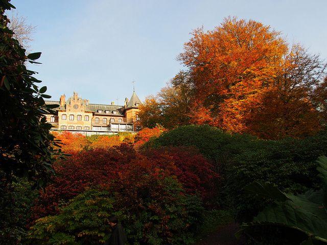 Besök en av Europas vackraste parker! 2010 fick Sofiero slott med sin romantiska park och slottsträdgård utmärkelsen som Europas vackraste park.