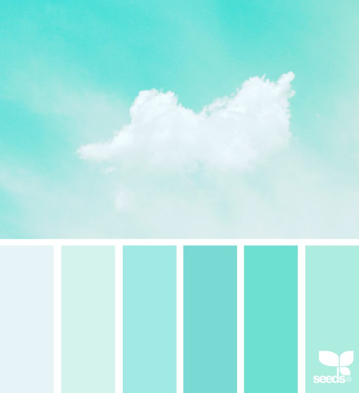 Aqua Paint Colors best 25+ mint color ideas on pinterest | mint color palettes, mint