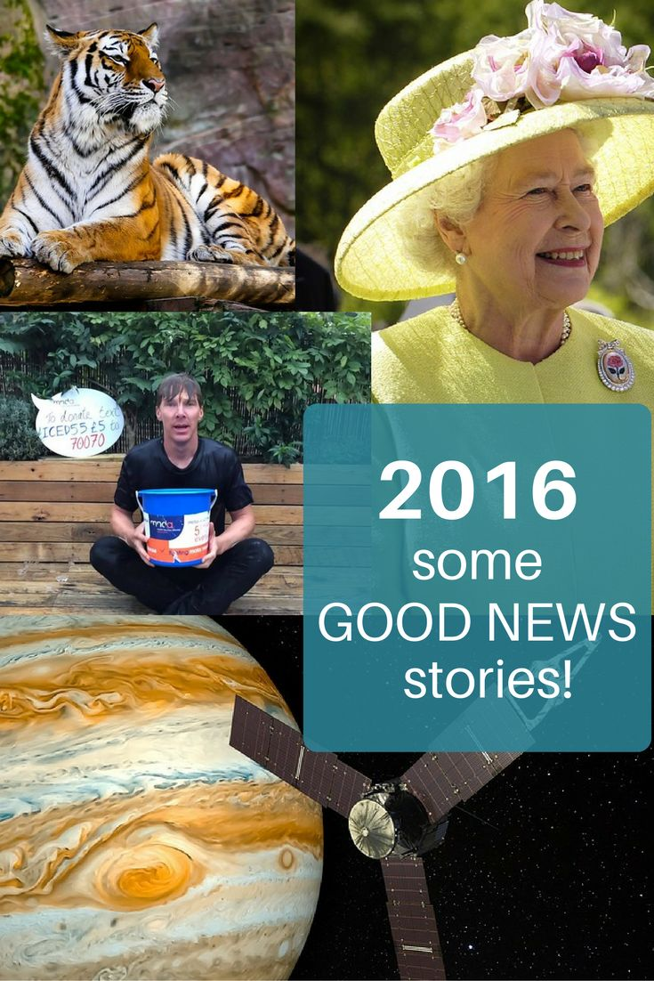 2016 seems to have been an unusually tough year. There have been some unexpected voting outcomes (Trump, Brexit, Honey G) broken political promises and some tragic, untimely celebrity deaths (David Bowie, Alan Rickman…The Great British Bake Off!) It's easy to forget the good things that actually happened in 2016. Here are some of them.