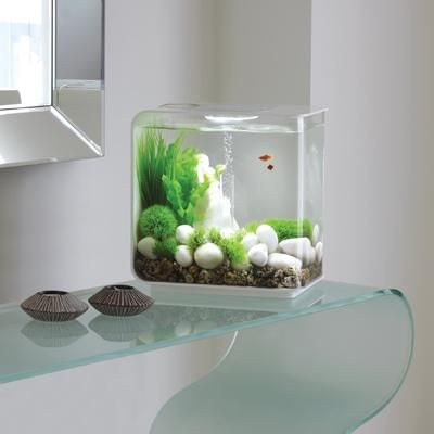 Stylish designer aquarium, that fits in even the smallest places, what a clever idea