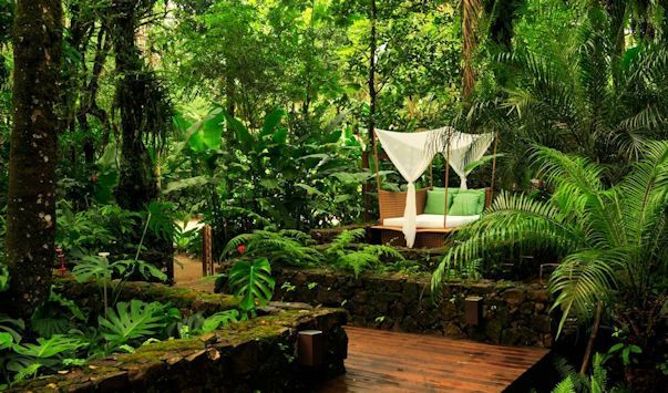 M s de 25 ideas incre bles sobre dise o de jardines for Casas diseno jardines tropicales