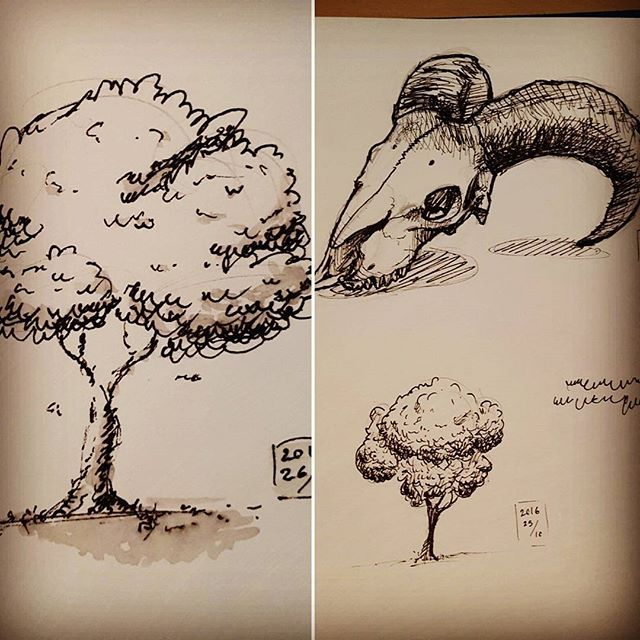 HI GUYS, I'M BACK!! ;DD I will now again be uploading drawings regularly and for the moment it will be mostly studies. Indeed, last month I started a new class at the school @synstudio. I learned and I am learning a lot from it so expect seeing my work and doodles here :) #artschool #synstudio #tree #gelpen #skull #instartist