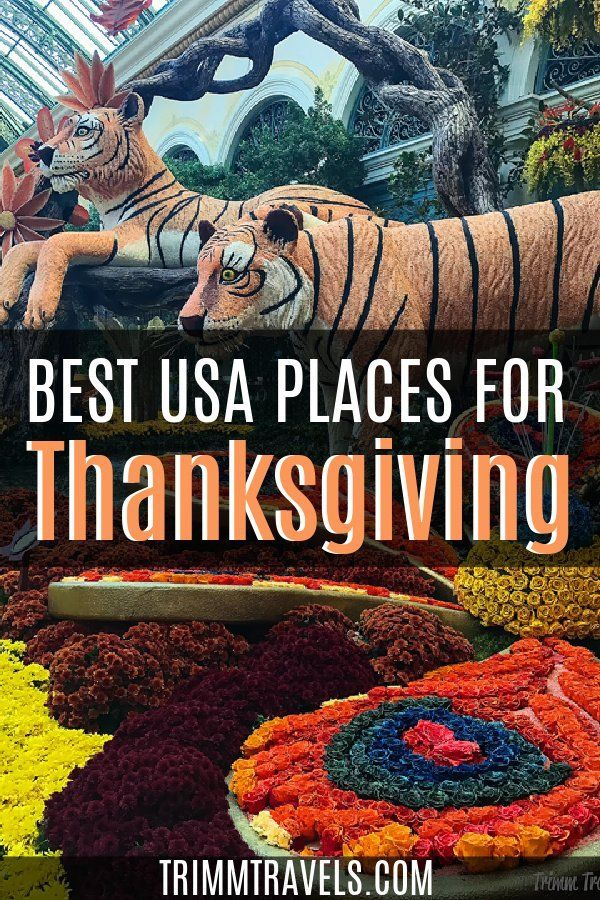 Best Places To Spend Thanksgiving In The United States Trimm Travels In 2020 America Travel Travel Usa Usa Travel Destinations