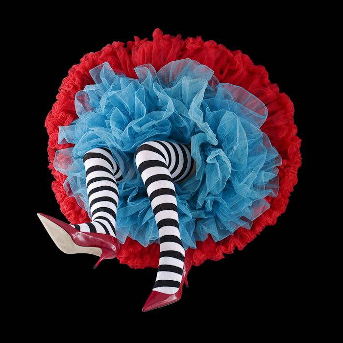 Crinoline Flowers by Daryl Banks Agonistica Cult of Photography