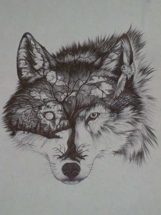 celtic wolf tattoo - Google Search