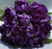 purple peonies...where were these when I got married?!