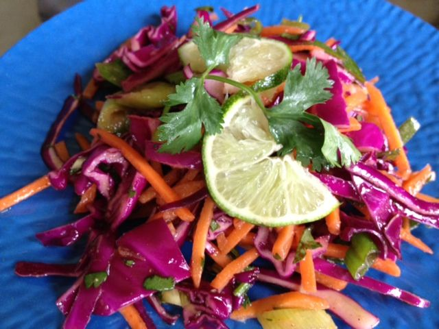 Mexican Slaw with Honey Lime Vinaigrette Recipe – The Lemon Bowl