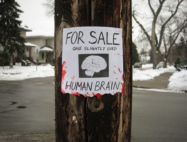 The Best Funny Street Signs Ideas On Pinterest New Image - 24 funniest signs ever spotted around 6 just brilliant