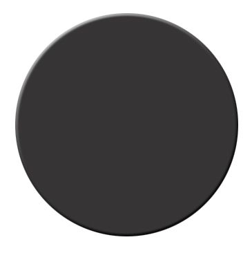 Onyx by Benjamin Moore: Daniel and Max used this paint all over their Brooklyn apartment and LOVE IT. It was what inspired me to paint our home black and the results they got on their doors were well worth the effort.: