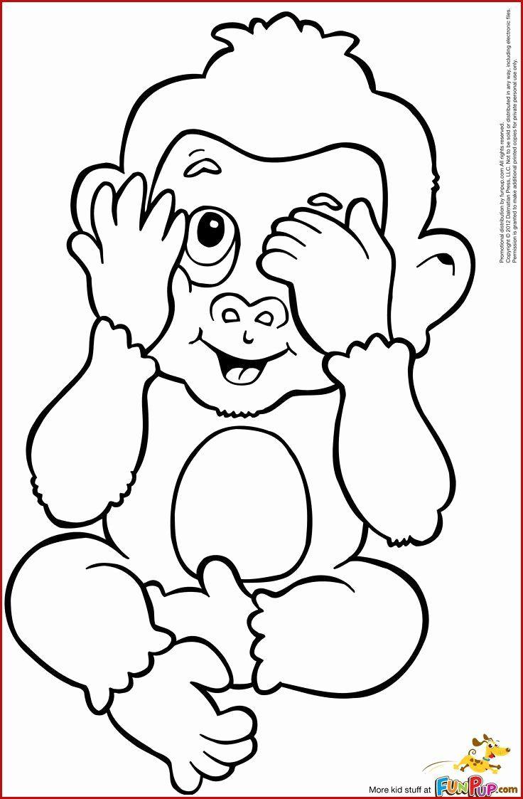 Pin By Karinedagenais On Tiere Im Zoo Monkey Coloring Pages Owl Coloring Pages Cute Coloring Pages
