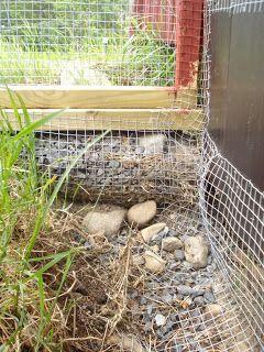 predator free aviary Hen , Swedish site Hållplats Häggvik: Rovdjurssäker hönsgård