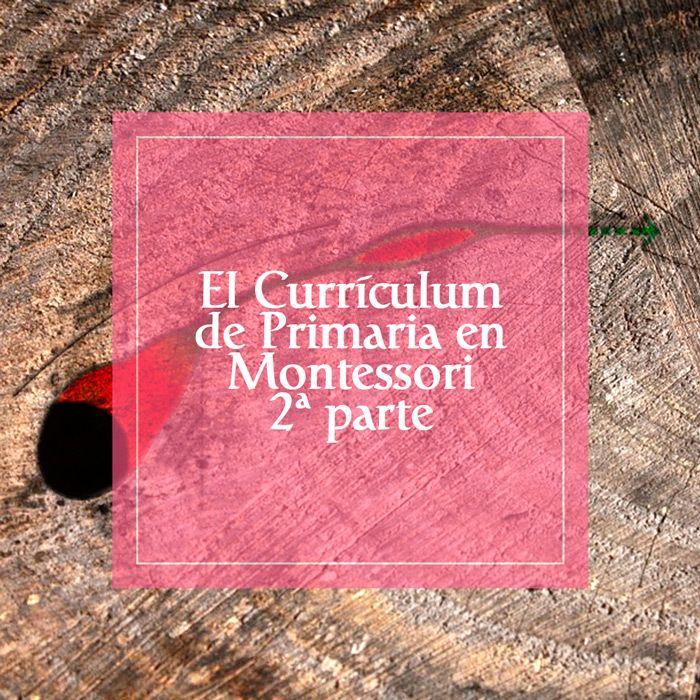 Segunda parte que explica cómo enfoca la Pedagogía Montessori el Curriculum de Primaria
