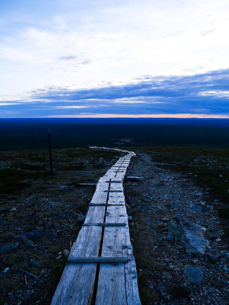 Kiilopää, Finland   Lapland   trave   nature   Saariselkä