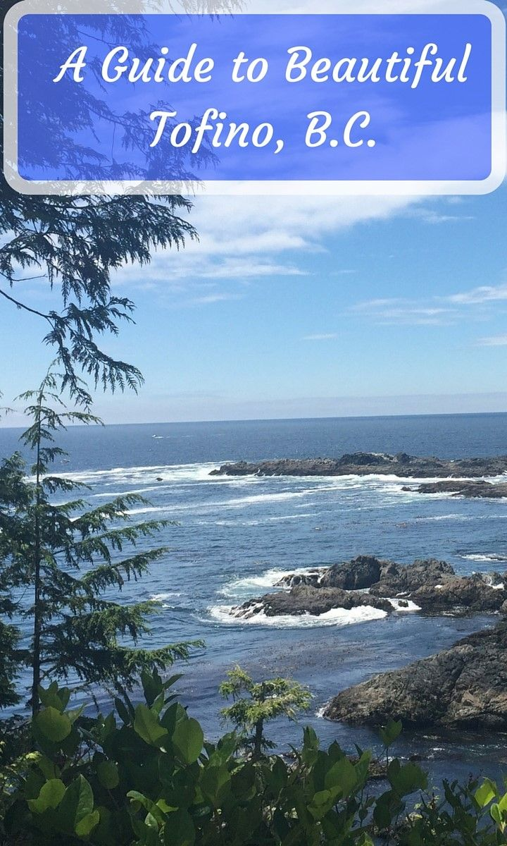 A 48 hour guide on what to see, do and eat in Tofino, B.C.