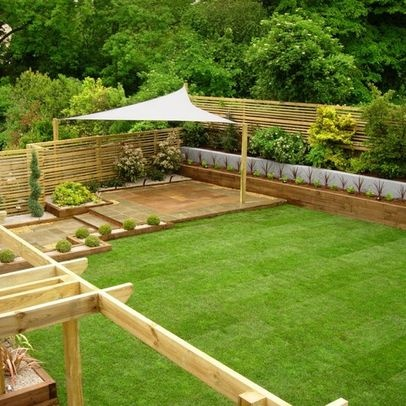 plant privacy fence - Google Search