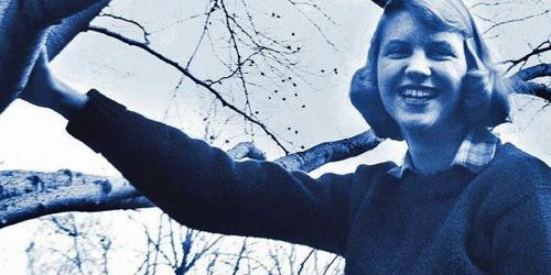 analysis of sylvia plath lady lazarus An analysis of lady lazarus by sylvia plath in lady lazarus, sylvia plath sings a song of death and rebirth the poem features a persona, weak willed and fragile, driven to death (three.