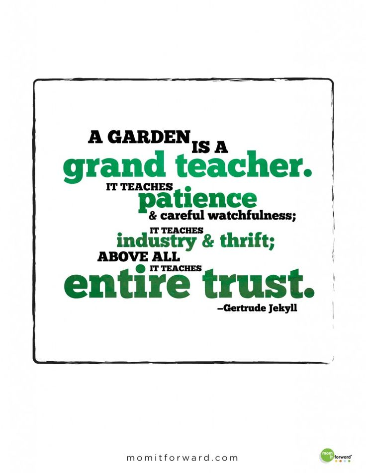 Gertrude Jekyll Birthday >> 17+ images about Garden Quotes on Pinterest | Gardens, The natural and Nelson mandela