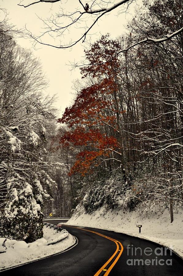 ✯ Seasons Collision